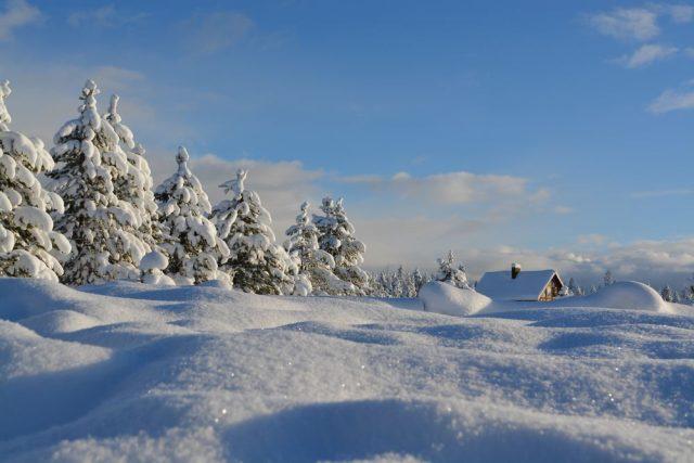De 10 bedste steder at tage hen om vinteren